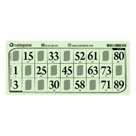 500 cartons rigide grand format vert - série 101